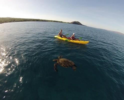Makena Turtle Kayak