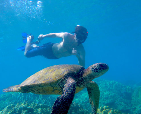 Snorkel with turtle Makena